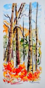 799 Souvenir du lac à la Pêche, aquarelle sur p. Catiera Magnani 140 lb, 7 x 4.5po